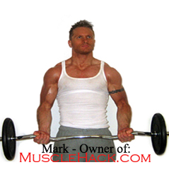 how to build muscle mass Workout Programs To Gain Muscle