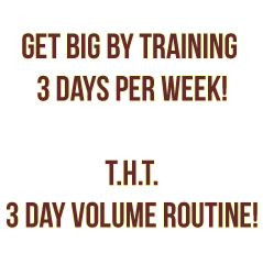 T.H.T. 3 Day Volume Workout