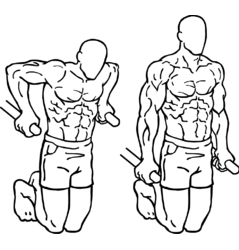 Tricep Dips & Chest Dips. The Big Difference!