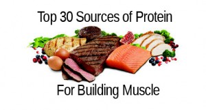 protein-foods-build-muscle