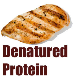 denatured protein