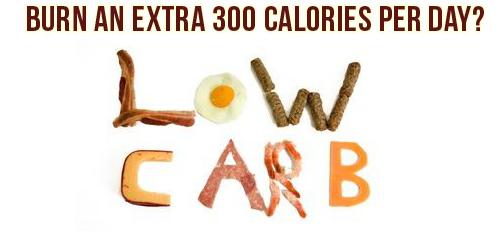 low-carb-metabolic-advantage