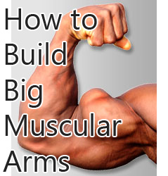 build-big-arms