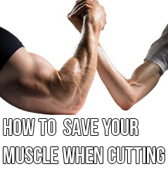 how-to-spare-muscle-on-a-diet