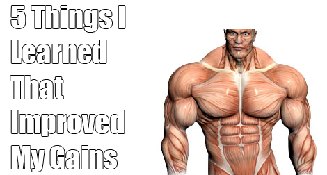 muscle-gains