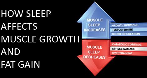 sleep-deprivation-gain-fat