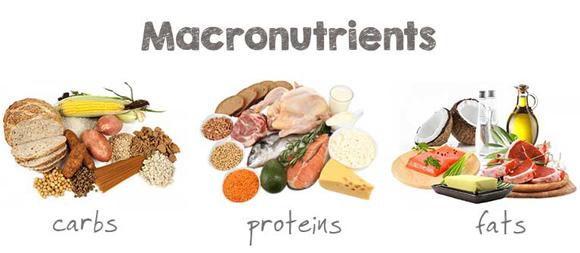 macronutrients-lean-bulk