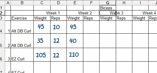 bodybuilding workout log