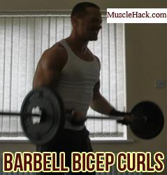 barbell bicep curls