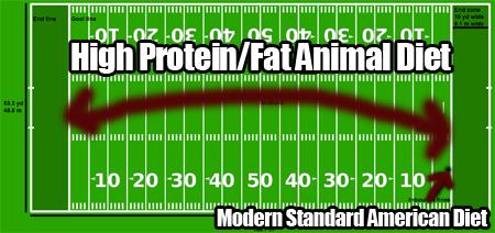 American_Football_field