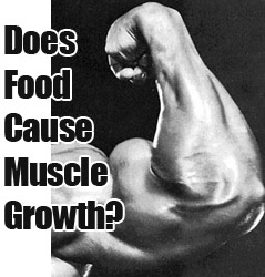 food muscle building