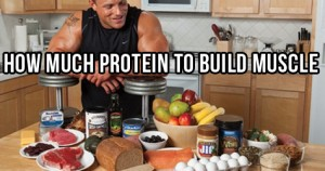 How Much Protein is Needed to Build Muscle?