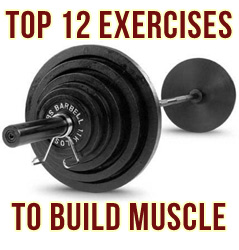 top-exercises-to-build-musc