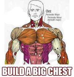 build-a-big-chest