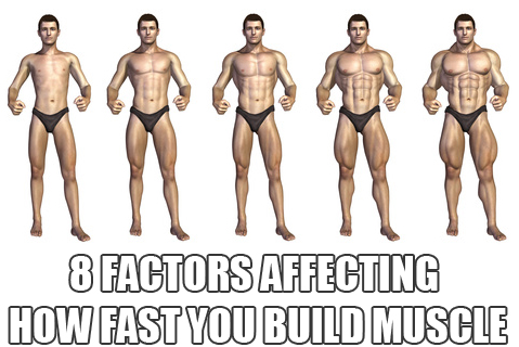 how to build your abs fast