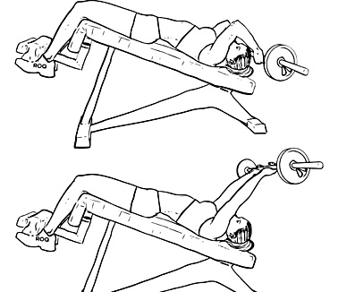 Are You Doing Decline Tricep Extensions?