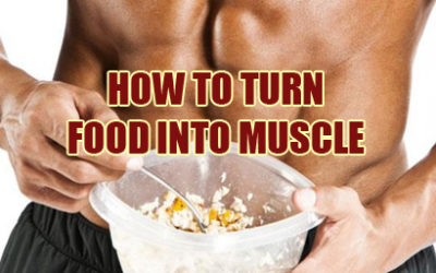 How To Turn Food Into Muscle Instead of Fat